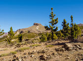 Teide National Park, Tenerife. Canary islands, Spain — Fotografia Stock