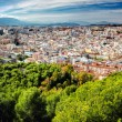 Panoramic view of Malaga city. Andalusia. Spain — Stock Photo #67799191