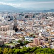 Panoramic view of Malaga city. Andalusia. Spain — Stock Photo #67799201