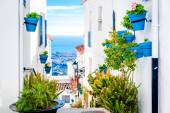 Picturesque street of Mijas with flower pots in facades — Stock Photo