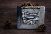 Pine Cones in Denim Box — Stock Photo