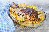 Baked carp — Stock Photo