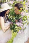 lilac bush — Stock Photo