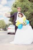 The bride and groom travel, tinted — Stock Photo