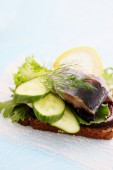 Herring with cucumber and lemon — Stock Photo