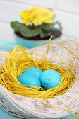 Turquoise eggs — Stock Photo