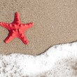 Starfish and ocean wave on sandy tropical beach — Stock Photo #51934685