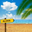 Tropical beach and direction board saying ALOHA — Stock Photo #54507353