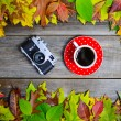 Coffee cup and retro camera on autumnal background — Stock Photo #57903489