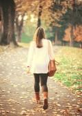 Promenade dans le parc en automne — Photo