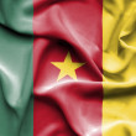 Cameroon waving flag — Stock Photo #64177151