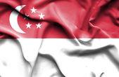 Singapoore wuivende vlag — Stockfoto