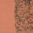New against old roof tiles - Roof renovation concept — Stock Photo #70406895