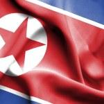 North Korea waving flag — Stock Photo #70447795