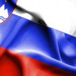 Slovenia waving flag — Stock Photo #70448297