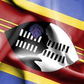 Swaziland waving flag — Stock Photo