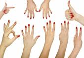 Collection of hand gestures isolated on white background  — Stock Photo