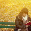 Beautiful young woman reads book — Stock Photo #72911253