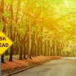 """RISK AHEAD"" sign against road in green forest - Business concep — Stock Photo #72918303"
