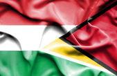 Waving flag of Guyana and Hungary — 图库照片