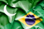Waving flag of Brazil and Pakistan — Stock Photo