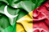 Waving flag of Mali and Pakistan — Stock Photo