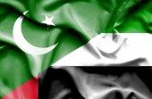 Waving flag of United Arab Emirates and Pakistan — Stock Photo