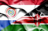 Agitant le drapeau du kenya et du paraguay — Photo