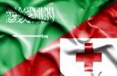 Machać flaga tonga i Arabii Saudyjskiej — Zdjęcie stockowe