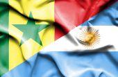 Mávání vlajkou Argentiny a senegal — Stock fotografie