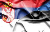 Mávání vlajkou Estonska a Srbsko — Stock fotografie