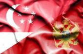 Agitant le drapeau du Monténégro et de Singapour — Photo