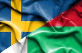 развевающийся флаг мадагаскара и швеции — Стоковое фото