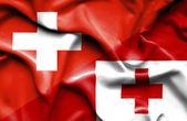 汤加和瑞士那飘扬的旗帜 — 图库照片