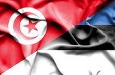Waving flag of Estonia and Tunisia — Stock Photo