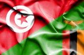 Waving flag of Zimbabwe and Tunisia — Stock Photo