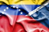 Waving flag of Czech Republic and Venezuela — Fotografia Stock