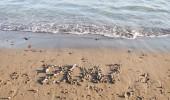 Calendar on sand. Year 2017 — Stock Photo