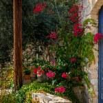 Entrance to a traditional house. Lofou village, Limassol district, Cyprus. — Stock Photo #57131703