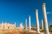 Ruins of ancient Salamis city. Famagusta district. Cyprus — Stock Photo