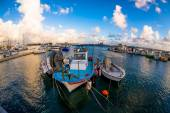 Fishing boats moored in a Paphos harbour. Cyprus — Stockfoto
