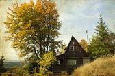 Piccolo cottage nella foresta di autunno — Foto Stock