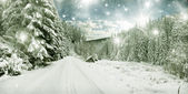 Winter landscape - snow covered trees and sky with stars — ストック写真