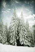 Christmas background with snowy fir trees — Zdjęcie stockowe