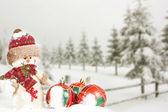 雪人和圣诞球 — 图库照片