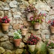 Stone house wall with flowers — Stock Photo #65622559