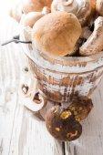Fresh mushrooms — Stock Photo
