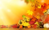 Beautiful autumn background — Stockfoto
