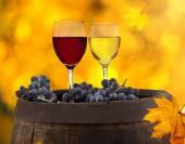 Wine still-life — Stock Photo