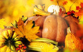 Bellissimo sfondo di autunno — Foto Stock